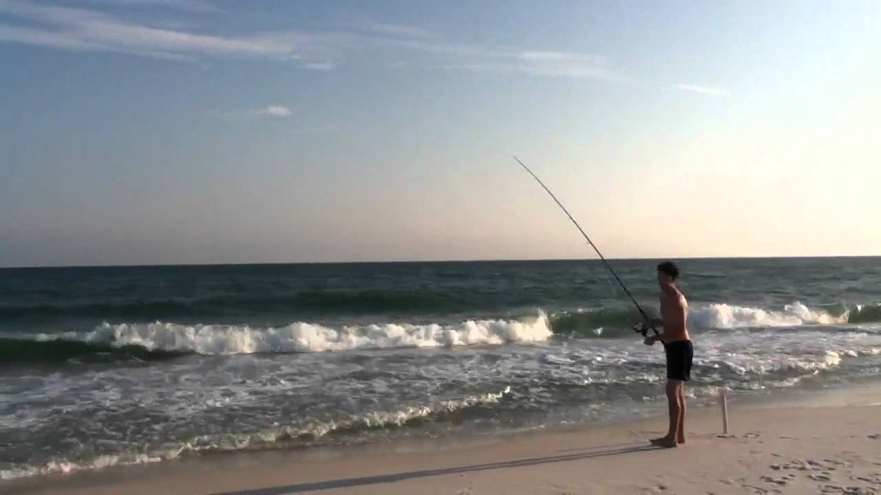 Surf fishing on the gulf of mexico youtube for Mexico fishing license