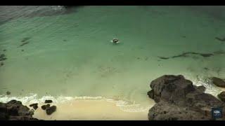 Затерянный Остров Приключения Фэнтези