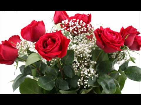 flores preciosas ara malikian