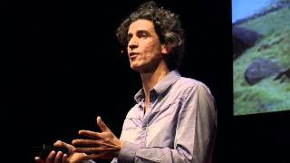 Our worldview forbids us the world of tomorrow | Yannick Roudaut | TEDxNantes