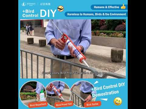 +Bird Control DIY.Products Demostration
