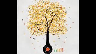 Coccolino Deep   Autumn in love
