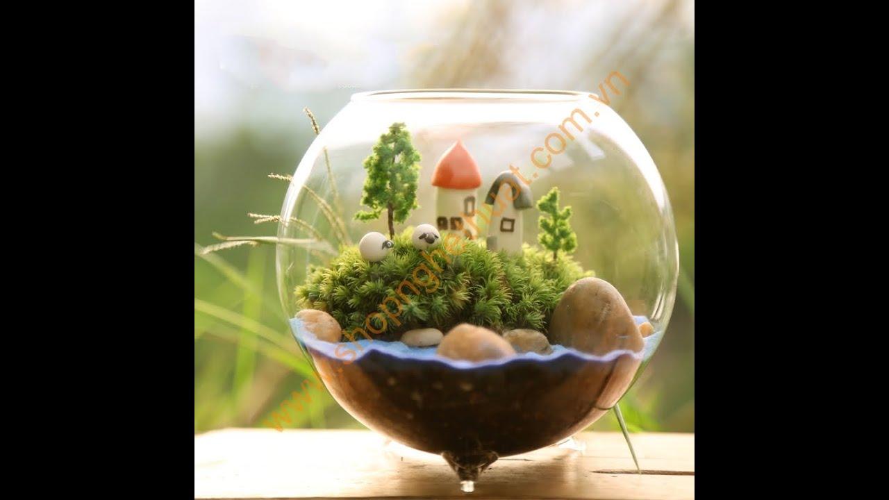 terrarium p v m i nh t p1 youtube. Black Bedroom Furniture Sets. Home Design Ideas