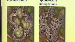 Здоровые дети панкреатит