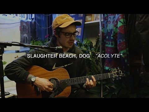 Slaughter Beach, Dog - Acolyte | Audiotree Far Out