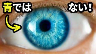 青い目はただの幻想...?