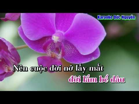 Hoa Bằng Lăng - KimThu
