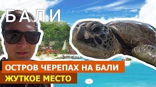 Жуткое место. Остров черепах на Бали, Бадунг / Turtle island