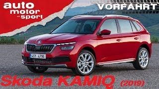 Skoda Kamiq (2019): Ist der Kleinste der Größte? - Review/Fahrbericht |auto motor und sport