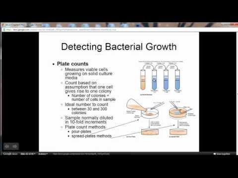 Organ-Specific Autoimmune Disorders