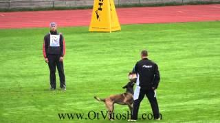 Ebor Ot Vitosha FCI 2014 Protection thumbnail