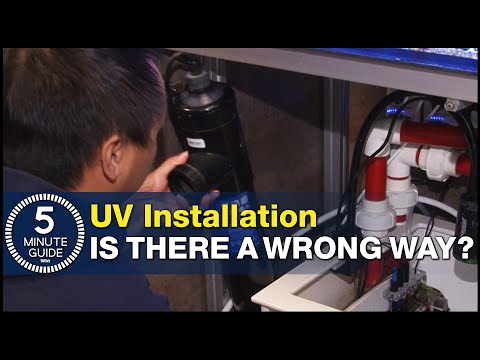 How to plumb a UV Sterilizer, set the right flow rate and avoid UV mistakes.