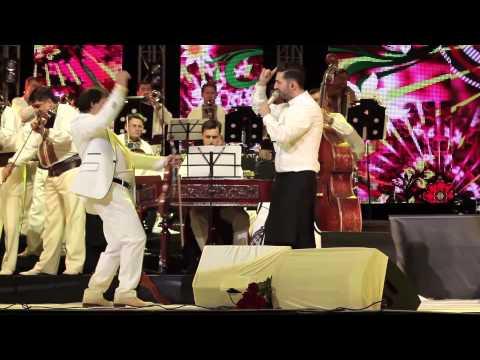Adrian Ursu - Zi-i scripcar, nu te lăsa (Concert solo