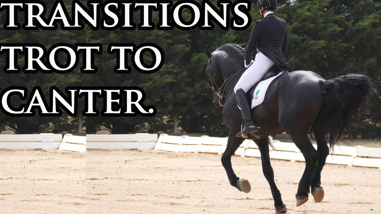 how to ask for canter transition
