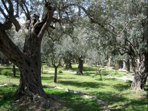 Garten Gethsemane Kyrie Youtube