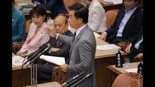 【松沢成文】参議院予算委員会(2017/6/16)