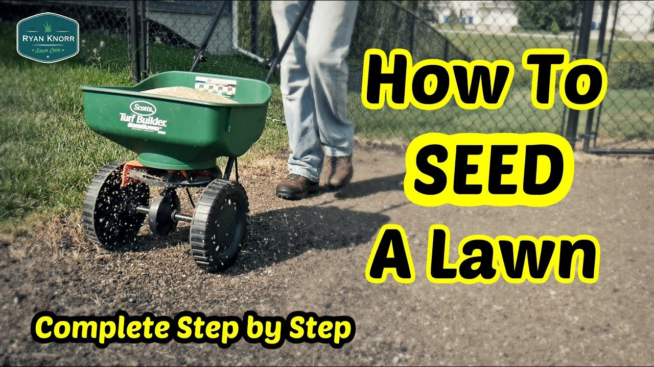 How To Seed A Lawn Complete Step By