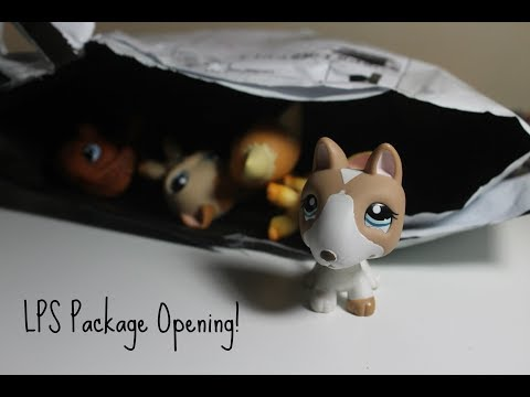 LPS Mercari Package Unboxing! #2