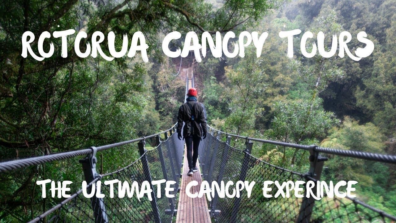 Rotorua Canopy Tour The Ultimate Canopy Tour Experience Youtube