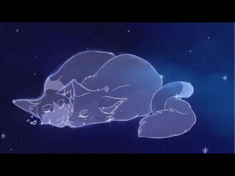 AMV] - Etoile Filante & Caramel - Aimer comme Toi (Marie Mai) - [LGDC] -  YouTube