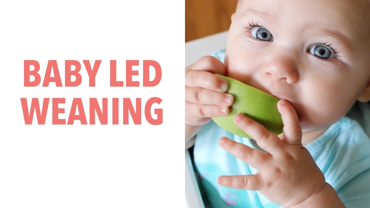 How to do Baby Led Weaning - BLW - and Why You'd Want To ...