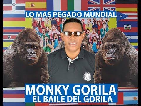 Monky Gorila - El Baile Del Gorila (Official Video)