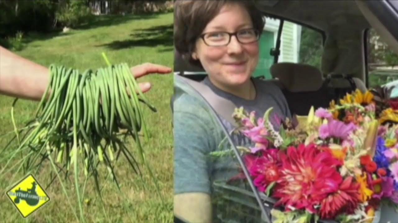 Multi-Generational Farming: Dartmouth Farmers Market Pt  1