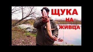 Рыбалка НА ЖИВЦА Двое Суток на Реке ПЕРЕЗАГРУЗКА