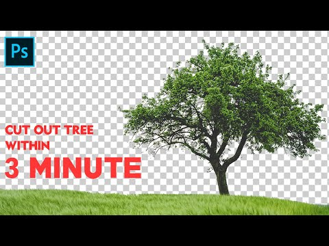 Photoshop Tutorial | How To Cut Out A Tree In Photoshop Cc