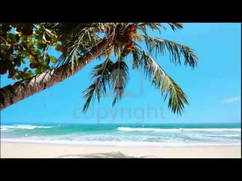 Hawaii Bombay -Mecano