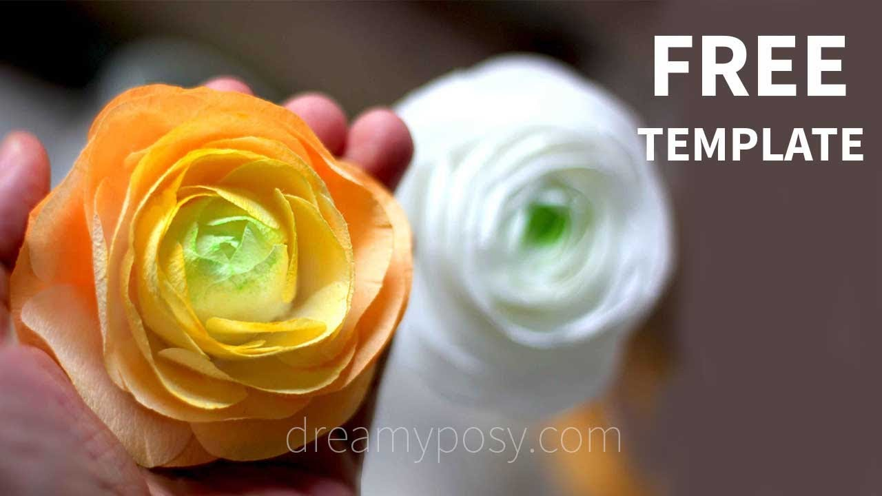 free template how to make paper ranuculus from coffee filter youtube