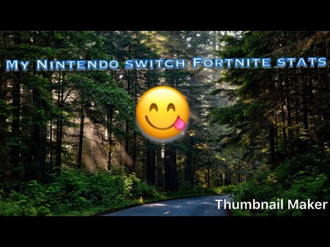 My Nintendo Switch Fortnite Stats!