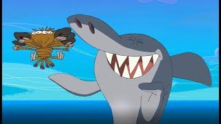 Zig & Sharko  😱😁 SHARKO PLAYS WITH ZIG 😱😁 2020 COMPILATION 👅 Cartoons for Children