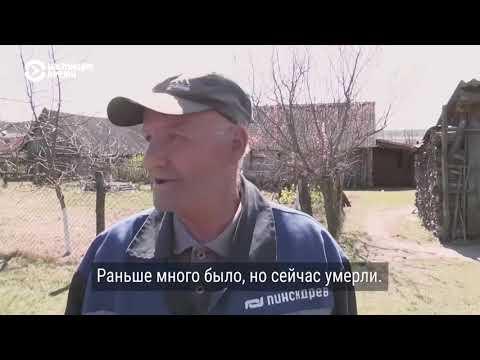 Как жители белорусской деревни ездят за водкой в Украину