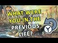 What Were You In A Previous Life?