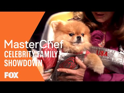 Gordon Gives Lisa Vanderpump's Dog A Special Apron   MASTERCHEF CELEBRITY FAMILY SHOWDOWN