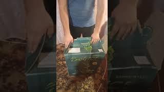 А вам сдавали так компьютер на ремонт?