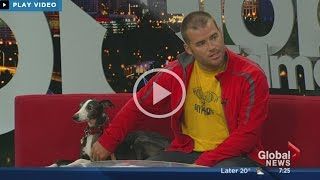 Frisbee Rob And Davy Whippet Live On Global Edmonton Morning Show 5/16/2015