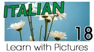 Learn Italian - Italian Plants Vocabulary