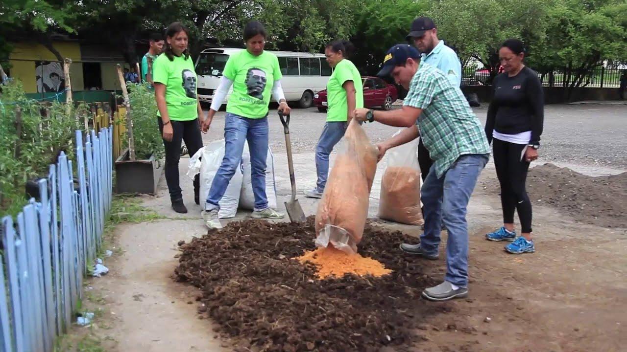Siembra urbana: Preparación del sustrato para la germinación de semillas en  canteros
