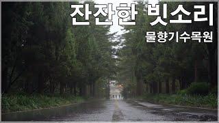 백색소음 자연의소리 -빗소리 8시간 연속 Rain sounds ,,white noise,asmr