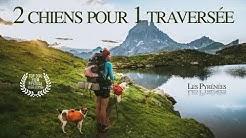 #DOCUMENTAIRE / 2 chiens pour 1 traversée, la grande traversée des Pyrénées GR10 en autonomie .