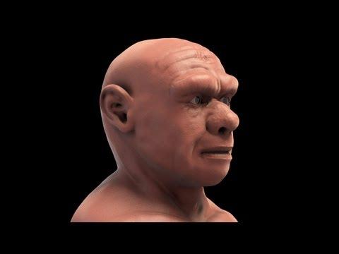 Homo neanderthalensis - 3D forensic facial reconstruction