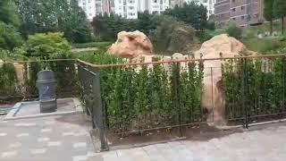 ◆오목조경사업(주)◆허준근린공원 수변공간 정비공사-세로…