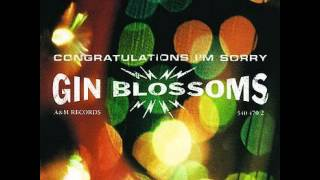 Watch Gin Blossoms My Car video