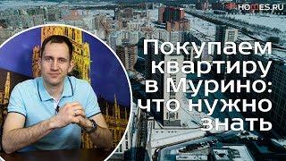Покупаем квартиру в Мурино: что нужно знать? Метро Девяткино, Санкт-Петербург