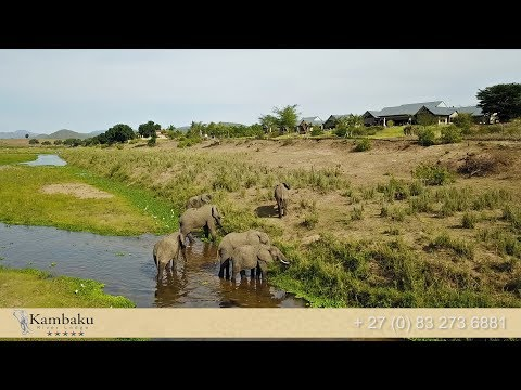 Kambaku River Lodge Activities Kruger National Park South Africa | Africa Travel Channel