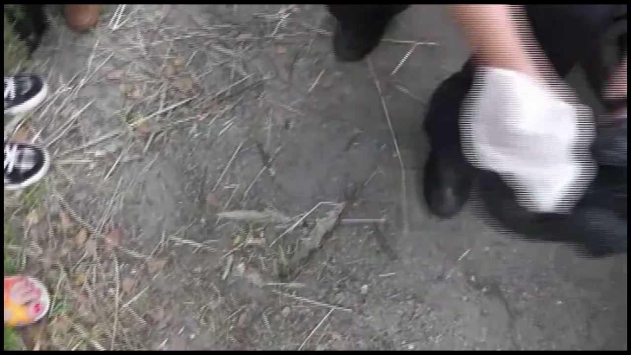 как захватили алкодилеров курганской области видео мехонка слезы сияло