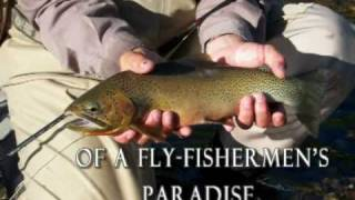 Montana Fly Fishing Adventure with the Rich Ranch