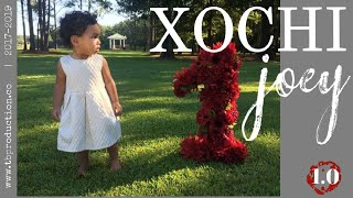 Xochi Joey 1.0 | Joey Wildflower 🌻